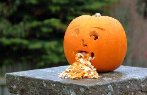 pumpkin vomit