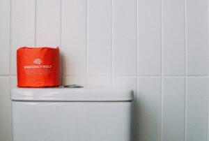 emergency toilet rolls