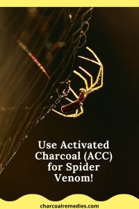 Antivenom For Spider Bites With Activated Charcoal