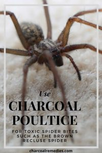 Brown Recluse Spider Bite Remedy With Activated Charcoal