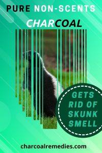 Odor Eliminator Skunk
