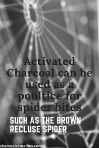 Spider Bite Remedy With Activated Charcoal