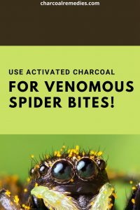 Spider Venom Antidote With Activated Charcoal