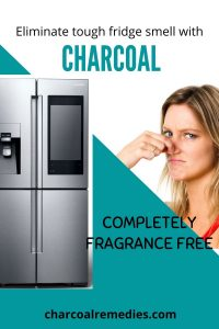 Activated Charcoal For Fridge Odor Removal