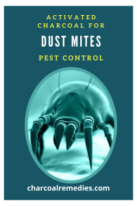 activated charcoal for dust mite 2