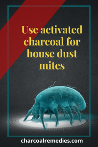 activated charcoal for dust mite 3