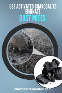 activated charcoal for dust mite 4